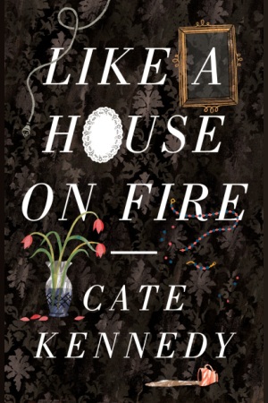 Cover of 'Like a House on Fire'
