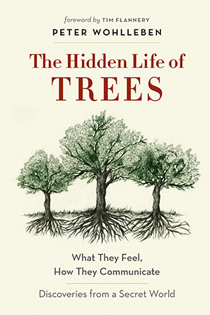 Cover for 'The Hidden Life of Trees'